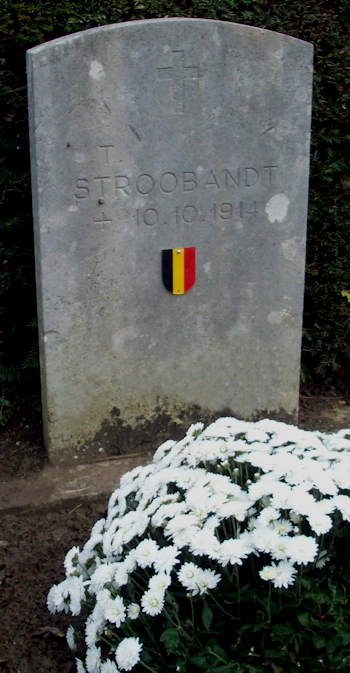 stroobant theo
